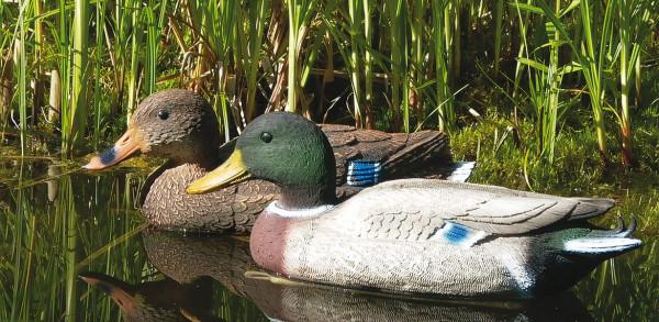 Lockvogel Ente mit Schwimmkeil